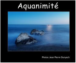 Aquanimité