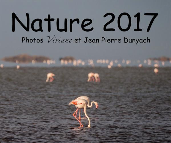 Nature 2017